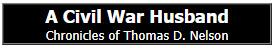 A Civil War Husband
